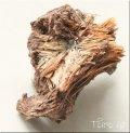 ルチル結晶集合  太陽ルチル ( ルチルサン )